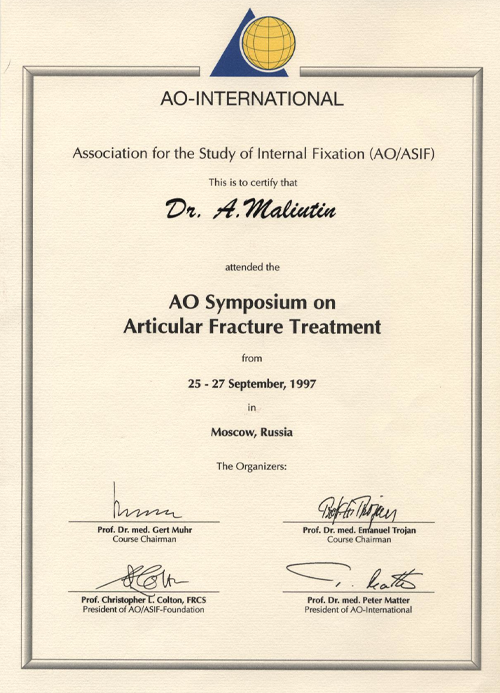Association for Study of Internal Fixation (AO/ASIF)